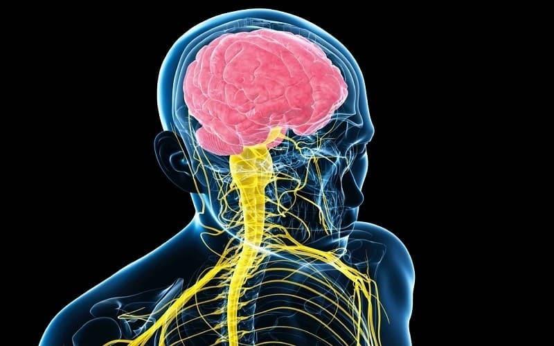 اختلال سیستم عصبی