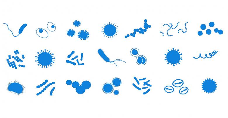 میکروب ها