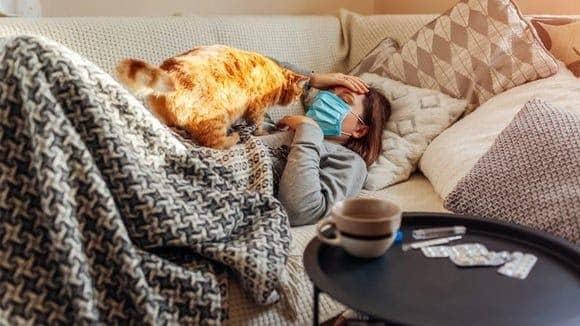 مراقبت از حیوانات خانگی حین ابتلا به ویروس کرونا