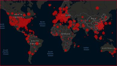 تصویر از آمار جستجو از کرونا به ما چه می گوید؟
