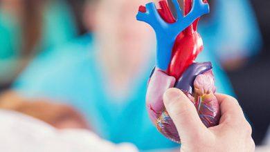 قلب راه انداز زندگی در بدن است و مراقبت از آن سلامت بیشتری به همراه دارد. به طور منظم باید چک آپ قلب انجام دهید و با نتایح تست قلب برای سلامت برنامهریزی کنید.